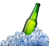 Beer bottle in ice Royalty Free Stock Photo