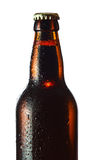 Beer bottle isolated on white Royalty Free Stock Image
