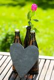 Beer bottle lying with roses for Father`s Day. Garden stock images