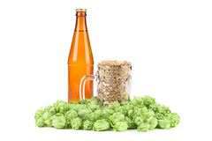 Beer bottle and mug with hop. Stock Photo