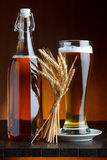 Beer bottle and mug with wheat Stock Image