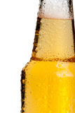 Beer bottle neck, isolated Royalty Free Stock Image