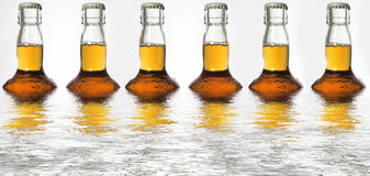 Beer bottle reflections. Six bottles of beer reflected in water royalty free stock photography