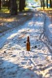 Beer bottle on a sandy road Stock Images