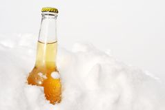 Beer bottle in snow Stock Photos