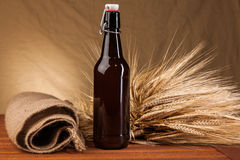 Beer bottle and spikes of barley Royalty Free Stock Photos