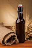 Beer bottle and spikes of barley Stock Photos