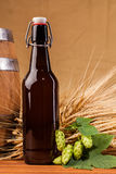 Beer bottle and spikes of barley Stock Photo