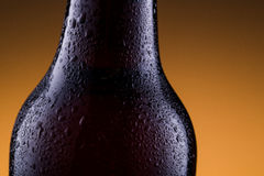 Beer bottle with water drops on golden background. Royalty Free Stock Images