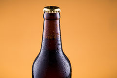 Beer bottle with water drops on golden background. Royalty Free Stock Photo