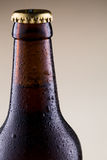 Beer bottle with water drops on grey background. Stock Image