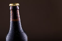 Beer bottle with water drops on grey background. Stock Photo