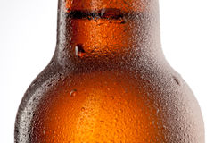 Beer bottle with water drops isolated on white Stock Photography