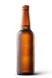 Beer bottle with water drops Royalty Free Stock Photos