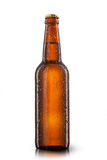 Beer bottle with water drops Royalty Free Stock Image