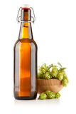 Beer bottle on white background Royalty Free Stock Images