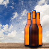 Beer bottle Stock Photos