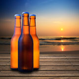 Beer bottle Stock Photography