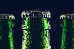 Beer, bottleneck, drink, lager, party, craft, fresh, condensation, close up, pub, concept Oktoberfest. Necks of sealed beer bottles with condensation on black Royalty Free Stock Images