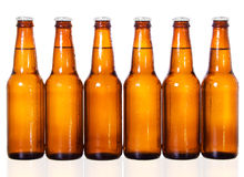 Beer Bottles. Stock image of six dark beer bottles over white background with reflection on bottom Stock Images