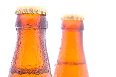 Beer bottles Stock Photography