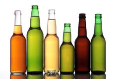 Beer Bottles. Six full beer bottles in a row on white background Stock Image