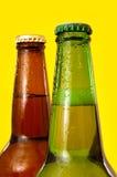 Beer bottles Stock Images