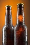 Beer bottles Royalty Free Stock Photos
