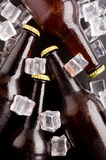 Beer bottles. Royalty Free Stock Image