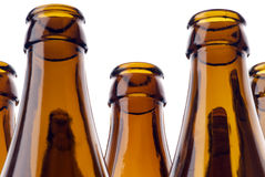 Beer bottles Stock Images