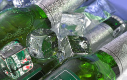 Beer bottles. In ice royalty free stock photos