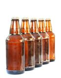 Beer bottles. Isoated on white royalty free stock photography