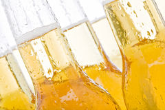 Beer bottles. Abstract close up of wet bottles on white - focus on left bottle Royalty Free Stock Image