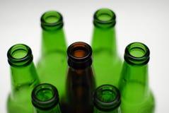 Beer bottles. Several beer bottles on white background Stock Photography
