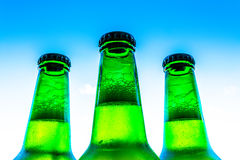 Beer in bottles with bubbles closeup on blue sky background Stock Photos