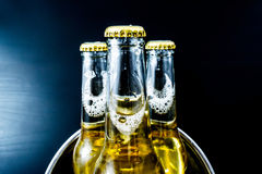 Beer in bottles with bubbles closeup Royalty Free Stock Photography