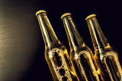 Beer in bottles with bubbles closeup Stock Image