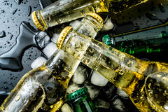 Beer in bottles with bubbles in ice cubes closeup. On a dark background Royalty Free Stock Photos