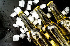 Beer in bottles with bubbles in ice cubes closeup Stock Photos