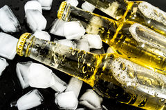 Beer in bottles with bubbles in ice cubes closeup Royalty Free Stock Photos