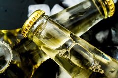 Beer in bottles with bubbles in ice cubes closeup Royalty Free Stock Photo