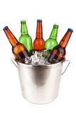 Beer bottles royalty free stock photos