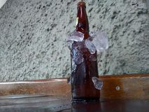 Beer bottles chilled in ice. The icy bottle of beer on a wall background stock photography