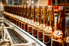 Beer bottles on the conveyor belt Stock Photography