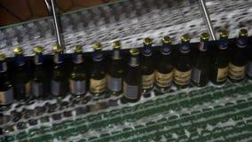 Beer bottles on conveyor of water bottling machine stock video footage
