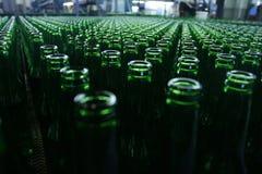 Beer bottles. Empty beer bottles taken from above Stock Image