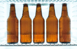 Beer bottles in a fridge. Five cold beer bottles in a fridge Royalty Free Stock Photos