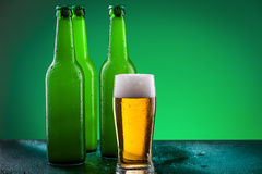 Beer bottles with full glass Stock Photography