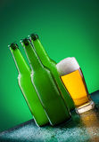 Beer bottles with full glass Stock Image