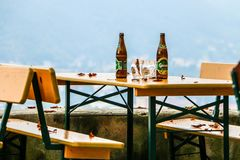 Beer Still Life. Beer bottles and glasses on table with fall leaves Royalty Free Stock Image